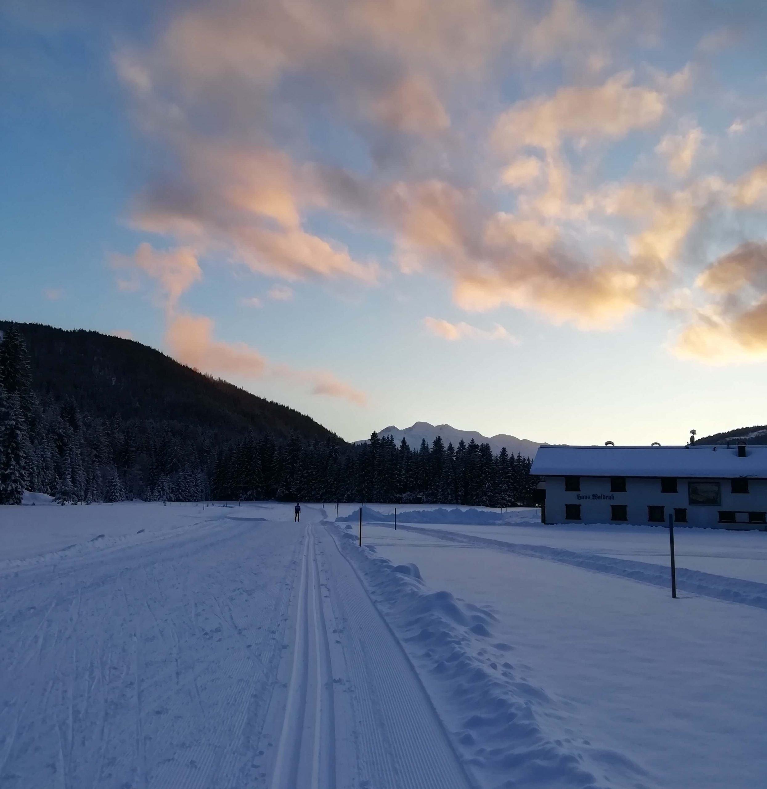 Langlauf Technik Trainingslager Natur